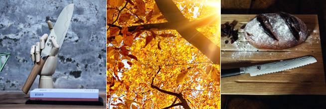 Unsere Herbstangebote